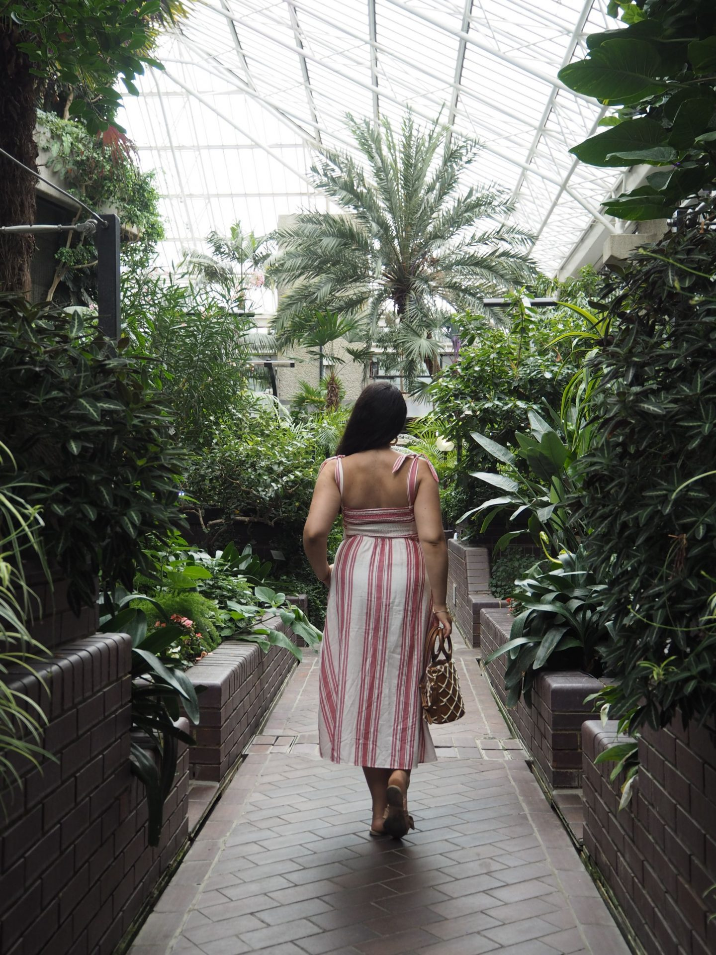 5 Reasons To Visit The Barbican Conservatory